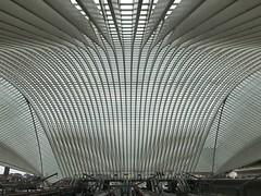 Bahnhof Liège-Guillemins (Berliner1963) Tags: railway eisenbahn concrete glass steel beton glas stahl wallonie santiagocalatrava architecture architektur lüttich station railwaystation bahnhof liègeguillemins liège belgium belgien