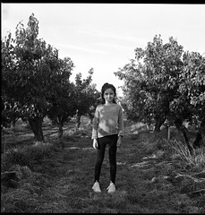 Nina in the Orchard (The Paul Reid) Tags: rolleiflex thepaulreid fomapan100 rodinal portrait