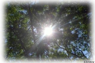 Hi Sun!