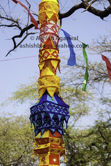 Colorful cylindrical banners hanging from tree at the Surajkund Mela (Ashish A) Tags: blue branch colorful colorfulpennanthanging cultural fair hanging haryana india indian mela orange pennant surajkund tree color festival