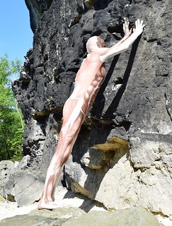 Morphsuit muscle in Sächsische Schweiz 2