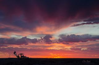 CP Sunset 1