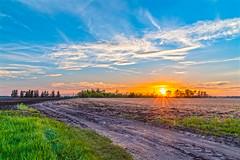 Spring Sunset (Daniel000000) Tags: sun light sky color new nature landscape nikon trail path trees clouds