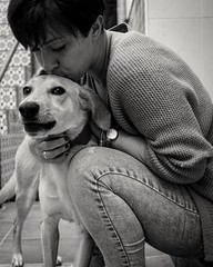 El beso (gabrielromeroplana) Tags: beso kiss perro dog portrait retrato black white bw monochromatic sony a6000 sigma 30mm 28