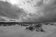 Dunes landscape (neya25) Tags: dunes landscape dünen landschaft schwarzweiss blackandwhite sw bw monochrome clouds wolken spiekeroog island insel olympusomdem10 mzuiko 918mm weitwinkel sand
