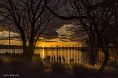 Fenced In (BobbyFerkovich) Tags: bristolsunsetrentonwashingtonlakewashington clouds water fence trees