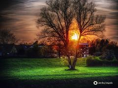 Zwischen  tag ud Traum (john_berg5) Tags: sunset sonnenuntergang nature light evening abendsonne bayern bavaria nikon d750
