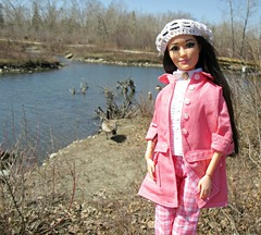 Geese Sighting3 (annesstuff) Tags: annesstuff geese canadian goose canadagoose bird spring bowriver eauclaire downtown calgary barbie mattel doll fashiondoll