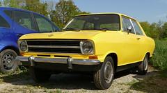 Opel Kadett B (vwcorrado89) Tags: opel kadett b