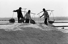 Salt fields /1 (Drehscheibe) Tags: nikon analog ilfordhp5 blackwhite worker salt field nikonf2