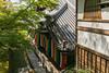 801A3531 (鹽味九K) Tags: 永觀堂 楓葉 寺廟 temple