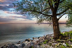 Lake Constance (Lucien Schilling) Tags: constance swiss lake horn thurgau switzerland ch