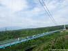 (takafumionodera) Tags: em1 forest mishima mishimaskywalk mtfuji olympus omd park shizuoka suspentionbridge tree 三島 三島スカイウォーク 公園 吊り橋 富士山 木 森 静岡