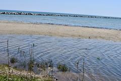 Lake Michigan (Sarah Lawver (follow me on Instagram!)) Tags: lakemichigan lakes lake greatlakes naturepresereve naure naturelovers naturelover nikon nikond7500