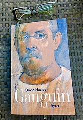 Gauguin (Kay Harpa) Tags: lecture book gauguin biography ivryparis thebiggestgroup