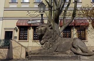 Berlin Spreeufer (2)