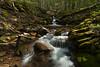 Dropping Through the Sun (Ken Krach Photography) Tags: monongahelanationalforest westvirginia