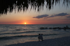shooting_the_sunset_naples_fl_7Dii3385