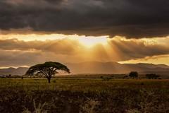 Omo Valley (Rod Waddington) Tags: africa african afrique afrika äthiopien ethiopia ethiopian etiopia ethiopie etiopian sunset clouds landscape sun rays mountains tree acacia outdoor omovalley omo omoriver