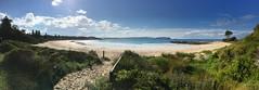 Cookies beach panorama (dahit86) Tags: plage beach australia nsw sea mer sand sable landscape paysage bleu blue vert green panorama