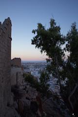 El sueño de Almotacin. (elojeador) Tags: alcazaba laalcazaba laalcazabadealmería almería torre torreón muralla eucalipto casa barrio piedra mar mediterráneo marmediterráneo horizonte paisaje panorámica cumplido elojeador