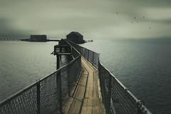 Mercurial (charhedman) Tags: oregoncoastroadtrip piersend garibaldi pier thelongestpierinoregon moody mercurial foggy cloudy dark shadow