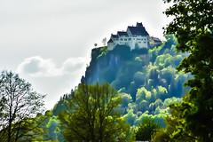 Schloss Werenwag - Castle Werenwag (PinoyFri) Tags: werenwag castle castello oberesdonautal château 城堡 kastilyo donautal upperdanubevalley danubevalley valledeldanubio donaudall idylle idyll felsen rock roccia rots nikond3400 nikon dreaming árboles trees bäume wald forest