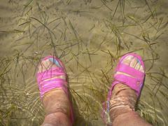 ¡¡¡¡Que me ahogo!!!!   Explorer (Nati Almao1) Tags: piesenelagua