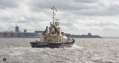 Svitzer Warden (alundisleyimages@gmail.com) Tags: svitzer warden merseyside rivermersey ports harbours liverpool weather craft shipping boat waves waterfront