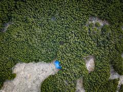 Latschen Hotel (vs_foto) Tags: drohne drone landscape landschaft latschen mavicpro natur nature outdoor tent zelt