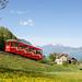 Seelisberg | CH-UR (Uri) | 29.04.2018 | Treib - Seelisberg funicular railway