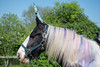 Horse dressed up as unicorn (Ian Redding) Tags: mane festival fun colored gypsy magic pony magical horn animal coloured pretend colourful dressedup irishcob horse dyed unicorn bath uk