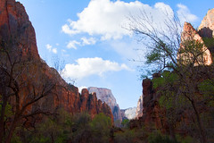 Zion National Park (hippyczich) Tags: zion nationalpark usa america