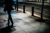 sidewalk (N.sino) Tags: m9 summilux50mm yurakucho sidewalk guardrail roadsidetree 有楽町 歩道 影 街路樹 夜道