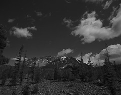 Mt Lassen on medium format film (Garrett Meyers) Tags: pentax67 mediumformat blackandwhitefilm 6x7 film filmphotographer clouds california cloudscape lassen volcano volcanic mt mtlassen forest homedeveloped snow garrettmeyers garrett meyers sky trees