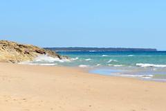800_8058 (Lox Pix) Tags: australia loxpix queensland qld northstradbrokeisland beach ocean sand water ferry watertaxi flower carferry bird boat surf surfer landscape reef rock cliff loxworx loxwerx l0xpix