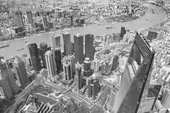 Shanghai (frank.gronau) Tags: skyline black white weis schwarz china shanghai alpha sony gronau frank