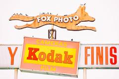 Fox Photo (Thomas Hawk) Tags: america california fox foxphoto losangeles usa unitedstates unitedstatesofamerica neon fav10 fav25 fav50 fav100