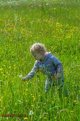 Just be a kid (Steffi.K.) Tags: kind pforzheimhohenwart badenwürttemberg wiese