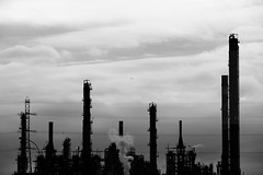 Industrial tune (Elios.k) Tags: horizontal outdoors nopeople factory chemicalplant industrial industry versalis eni chemicalplantation silhouette clouds cloudysky weather contrast sky powerlines musicscore smoke pollution chimney airpollution fluegasstack pipe onebird flying blackandwhite bw monochrome travel travelling july2017 summer vacation roadtrip canon 5dmkii photography mardyck dunkirk dunkerque hautsdefrance france europe