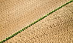 A flag of farmers (kap_jasa) Tags: field grass farming agriculture sowing wheat grain kiteaerialphotography kite flying canon dragočajna aerial slovenia