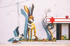 The Stories the Animals Would Tell (Thomas Hawk) Tags: america rocksprings usa unitedstates unitedstatesofamerica wyoming mural neon neonsign rabbit us fav10 fav25 fav50