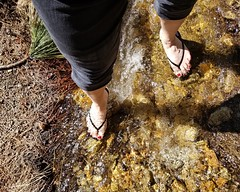 Flojos and toes in the creek (Blonde Karyn Heels) Tags: flipflops feet toes anklet capris public outdoors crossdress pedicure