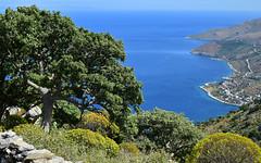 Mani 14 (orientalizing) Tags: coast desktop easternmani featured greece kournouravine landscape mani monipanayiakournou southernpeloponnese steep