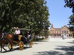 En calèche (Sur mon chemin, j'ai rencontré...) Tags: séville andalousie espagne spain parc parcdemarialuisa calèche cheval placedespagne españa losremedios