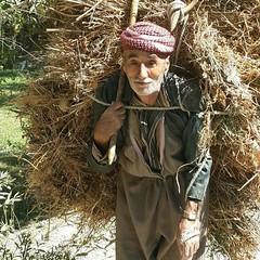 KURDISTAN (Kurdistan Photo كوردستان) Tags: kurdistan democratic party koerdistan kurdistani kurdistán kurdistanê zagros zoregva zazaki zaxo zindî azadî azmar xebat xaneqînê christianity cegerxwin van love mahabad music arbil democracy freedom genocide herêmakurdistanê hawler hewler hewlêr halabja herêma judaism jerusalem kurdistan4all lalish qamishli qamislo qamishlî qasimlo war erbil efrînê refugee revolution rojava referendum yezidism yazidis yârsânism unhcr peshmerga peshmerge كوردستانيان نهورۆز barzani people 184 garden rock soil flower bridge sky river water viaduct mountain grass landscape field snow