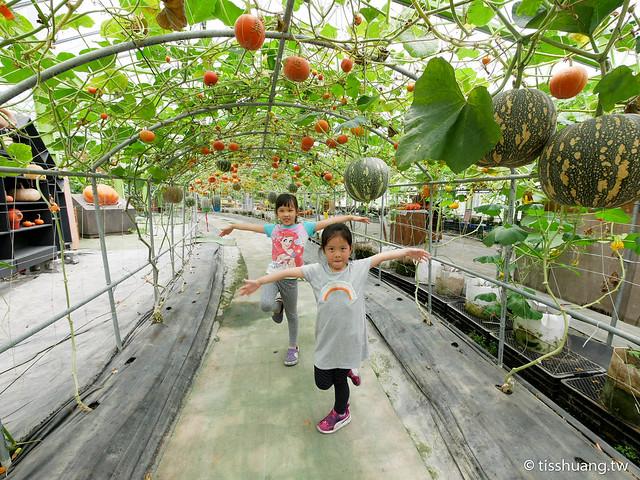 旺山休閒農場-1270040