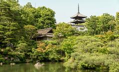 Ninnaji goten (hswrrswa7) Tags: ninnaji kyoto japan worldheritage