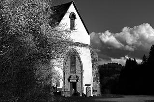 Frühling in Tennenbach 2