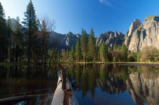 Mirror Image | Yosemite National Park, California
